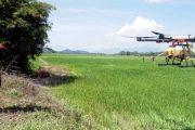 SEMBUR RACUN MENGGUNAKAN DRON, BEKAS PELAJAR ILP RAIH PENDAPATAN LUMAYAN